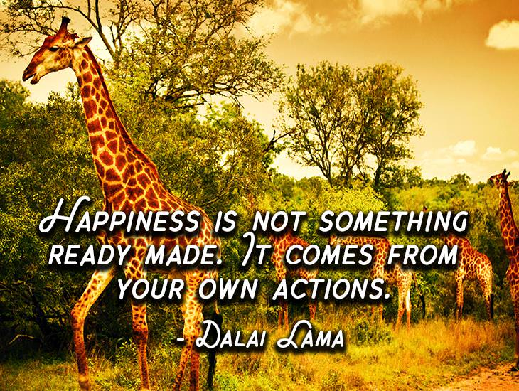 Happiness Is Not Something Ready Made