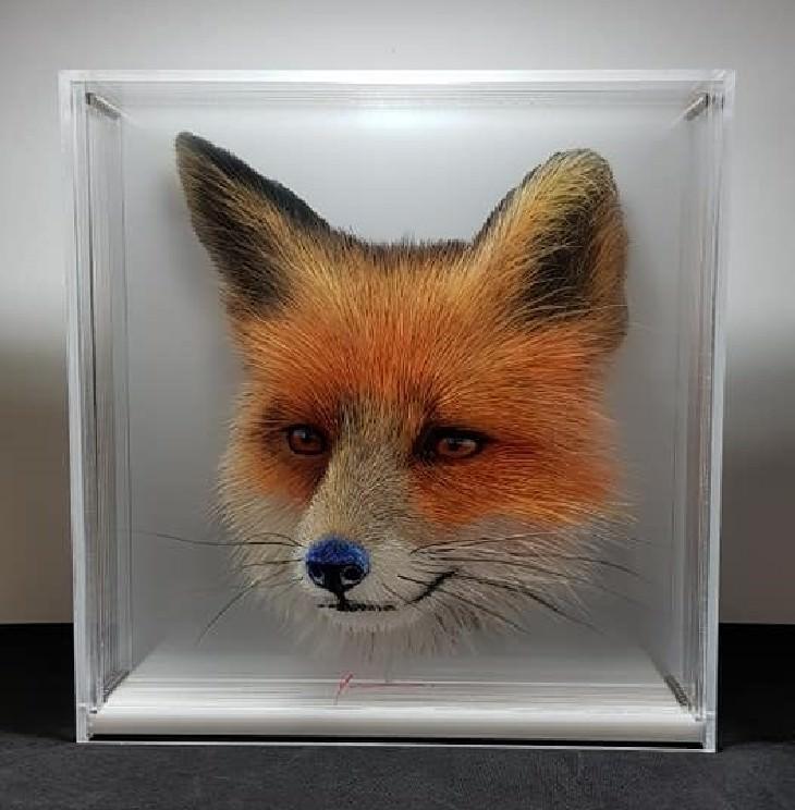 Yosman Botero Gómez 3D animal paintings Fox