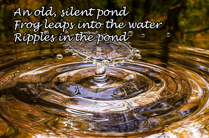 Haikus: ripple in pond