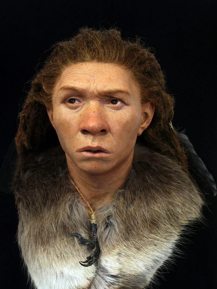 Skull reconstructions: Neanderthal woman