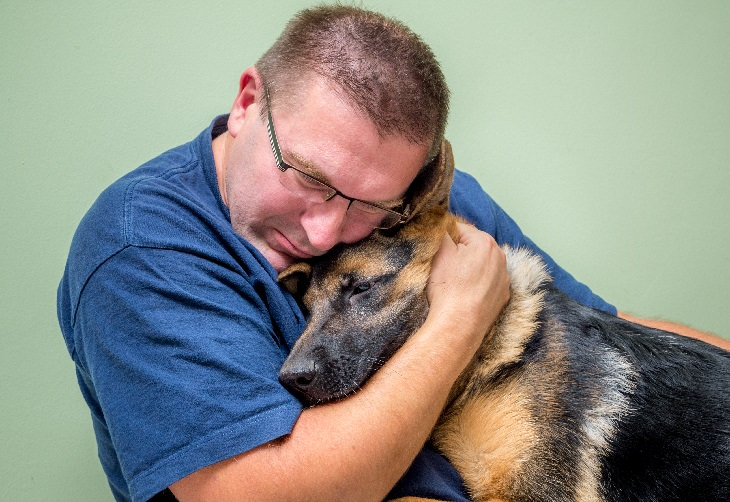 Emotional support dog: comfort, hug