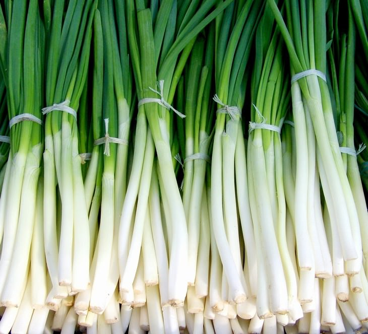 onions and garlic prevent cancer green onions
