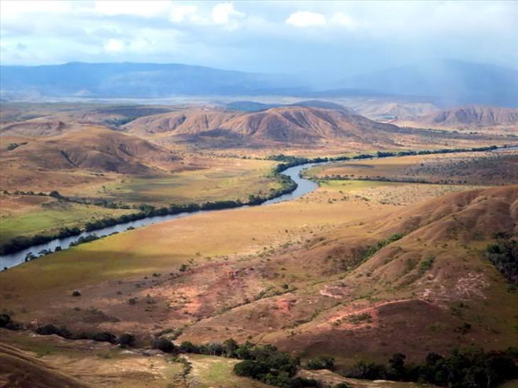 Guyana: savannah