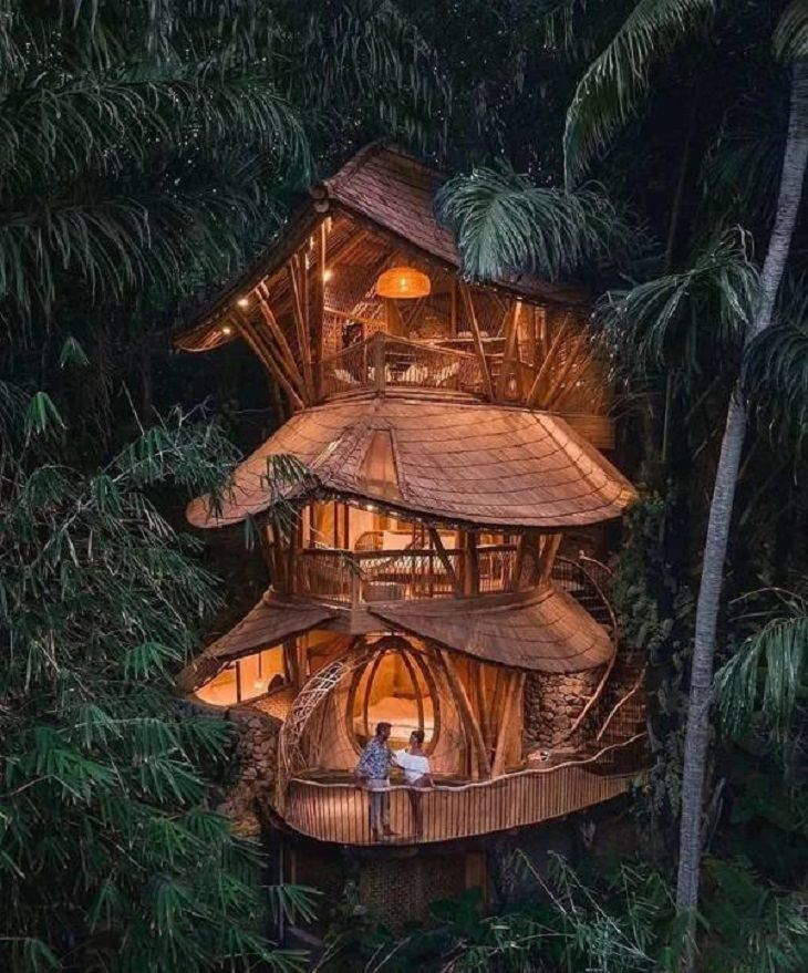 Tree Houses, tree leaves