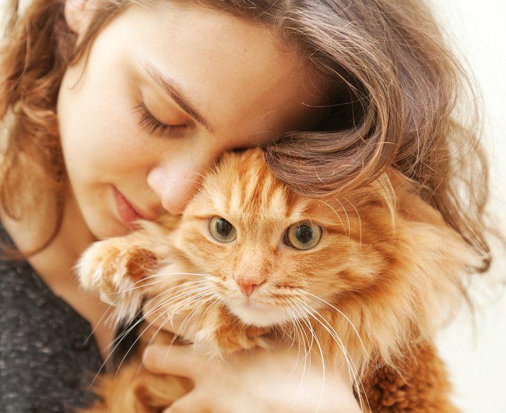 Cat Owners, hug cat