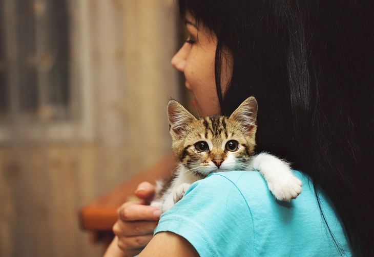Cat Owners, kiiten and woman