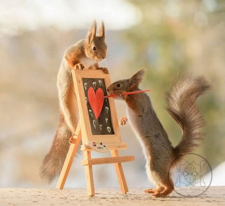 Adorable Photos of Squirrels Engage with Tiny Object by Geert Weggen,painting
