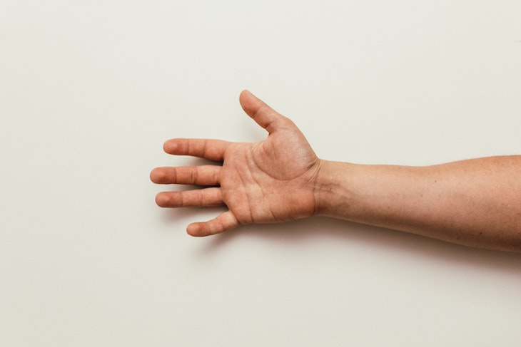 Study Finds Humans Are Evolving To Have 3 Arm Arteries forearm