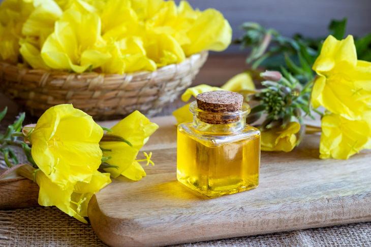 Essential Oils for Rheumatoid Arthritis Evening Primrose Oil