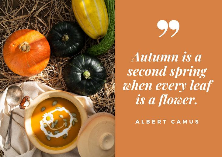 """Quotes abour fall, """"Autumn is a second spring when every leaf is a flower."""" ― Albert Camus"""