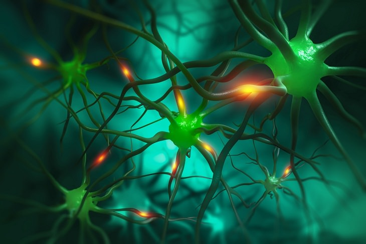Microrobots, nerve cells