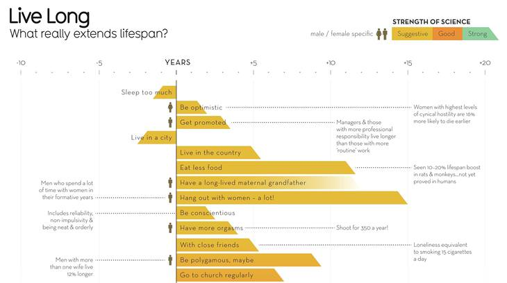 Infographic: What Increases Life Expectancy?