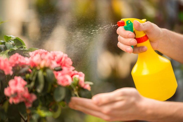 Baking Soda for Garden, cleaning plants