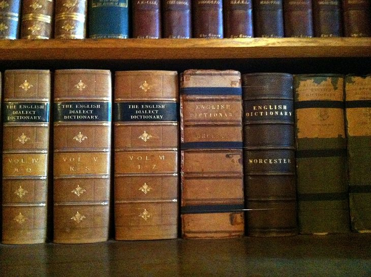 Facts About Dictionaries, history