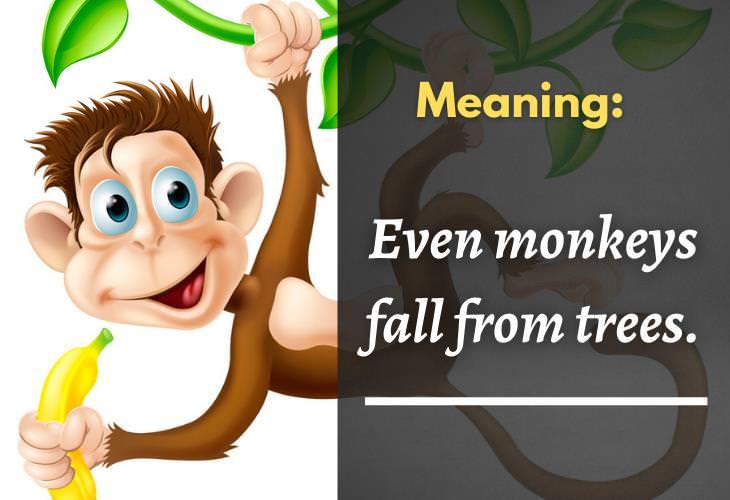 Wise Korean Proverbs, monkey