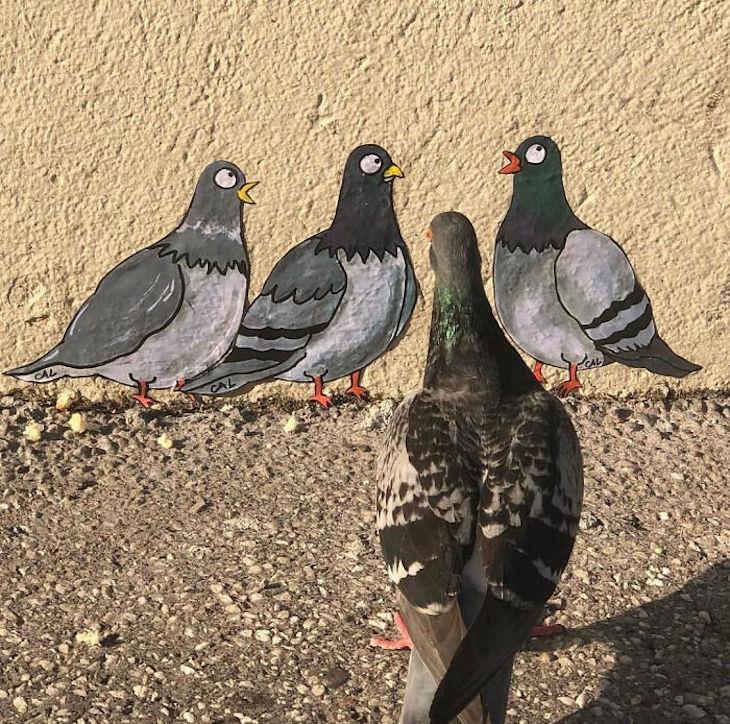 Street Artist CAL Uses Urban Corners Ingeniously, pigeons