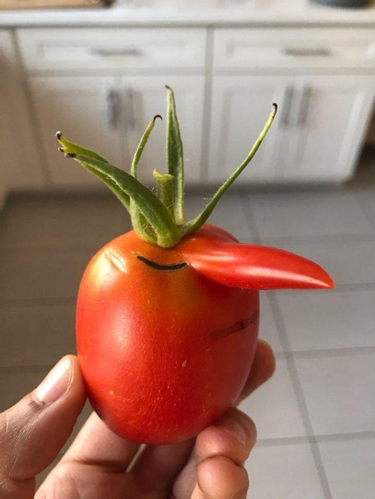 Funny-Shaped Fruits & Veggies,  tomato