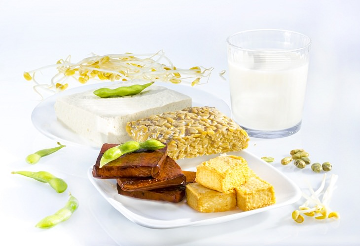 Plant-Based Protein Sources, Soy products