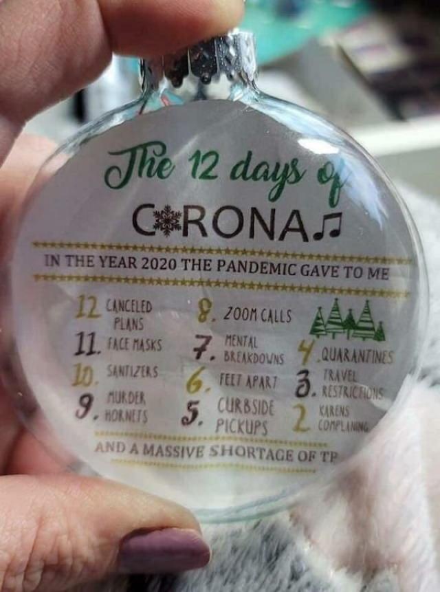 Funny Christmas Photos 2020 The 12 days of Christmas but make it Coronavirus related