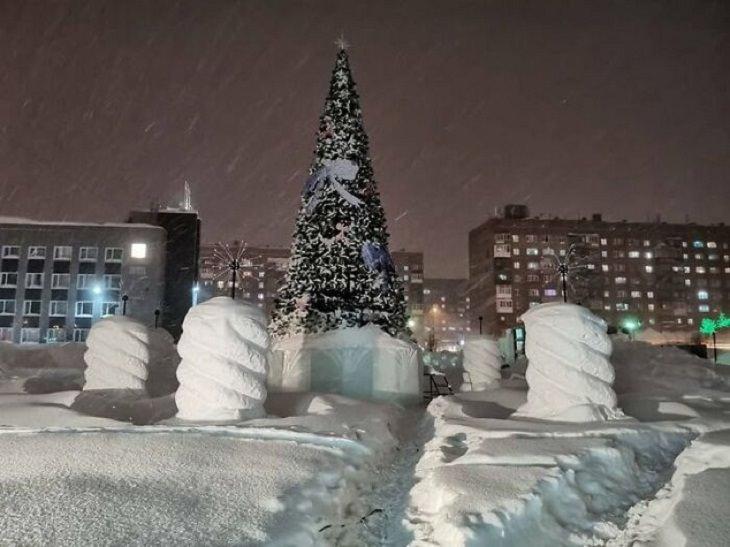 Norilsk, Russia, tree