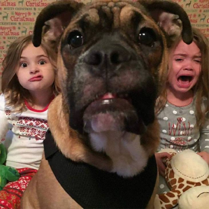 Dogs Who Ruined Christmas, children