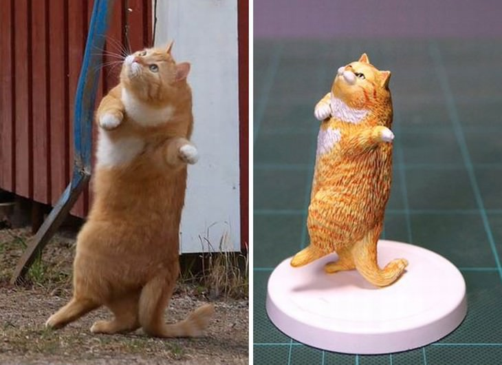 Meetissai animal memes in sculptures  dancing cat