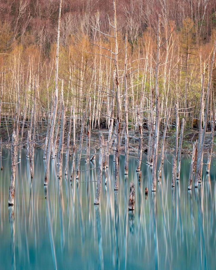 Biei, Hokkaido, Japão por Craig Mcgowan