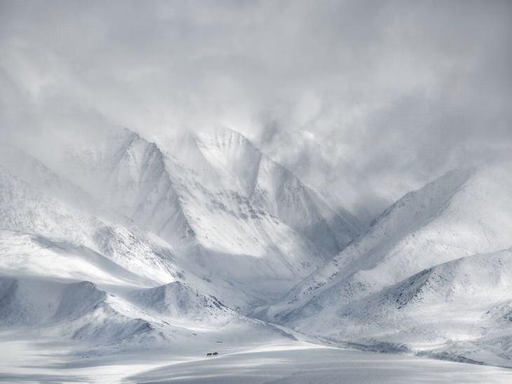 Mongólia Ocidental por Ricardo Da Cunha