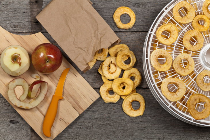 Dehydrated Foods Guide and Recipes dried apples