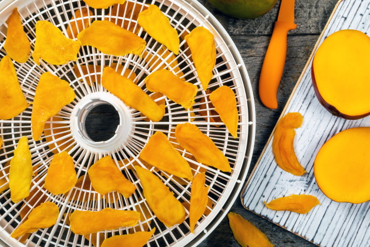 Dehydrated Foods Guide and Recipes mango chips