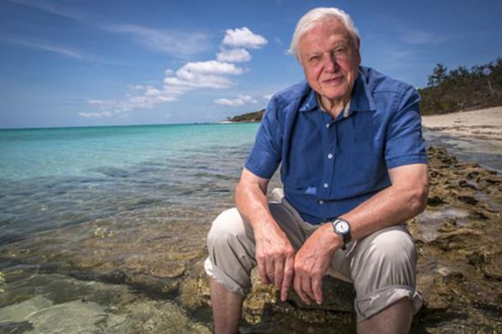 Explore a Natural Wonder with David Attenborough Narration