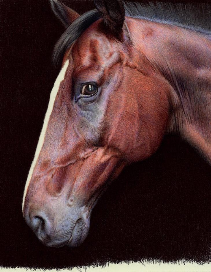Nicolas V. Sanchez Ballpoint Pen Art horse