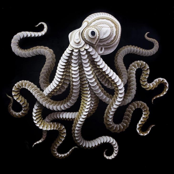 Patrick Cabral paper wildlife Octopus
