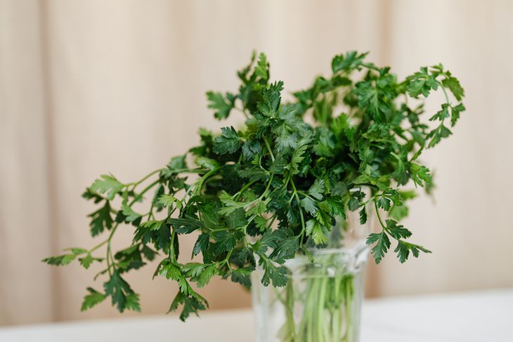 Food Storage Tips parsley in vase
