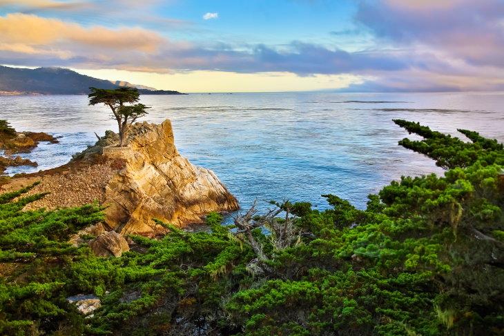 Scenic Road Trips in the USA 17-Mile Drive, California