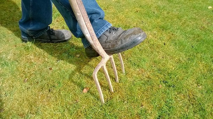 Lawn Care Tips for the Summer Season, Aerate