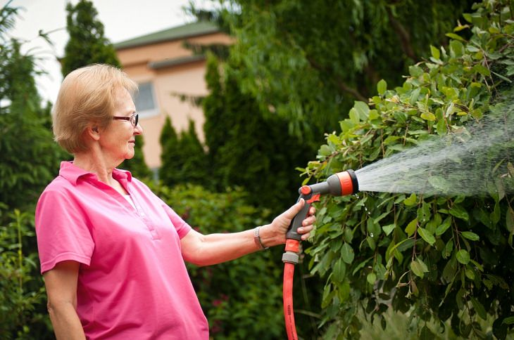 Lawn Care Tips for the Summer Season, Water your yard