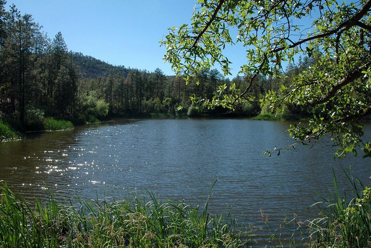 10 Best RV Parks in the US horse thief lake