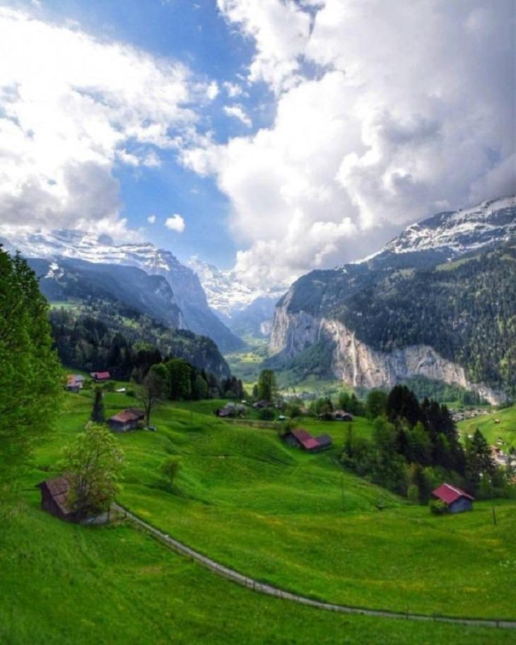 Nature Pics,