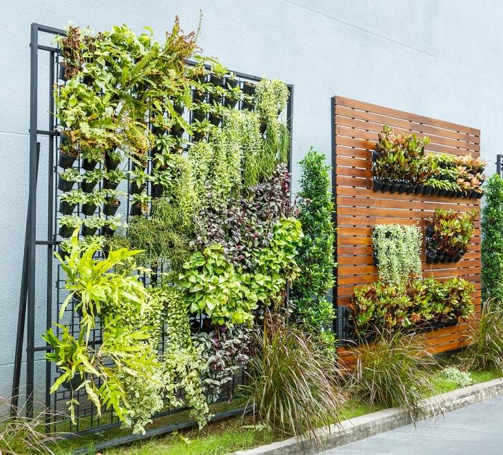 Unusual Gardening Methods, Vertical Gardening
