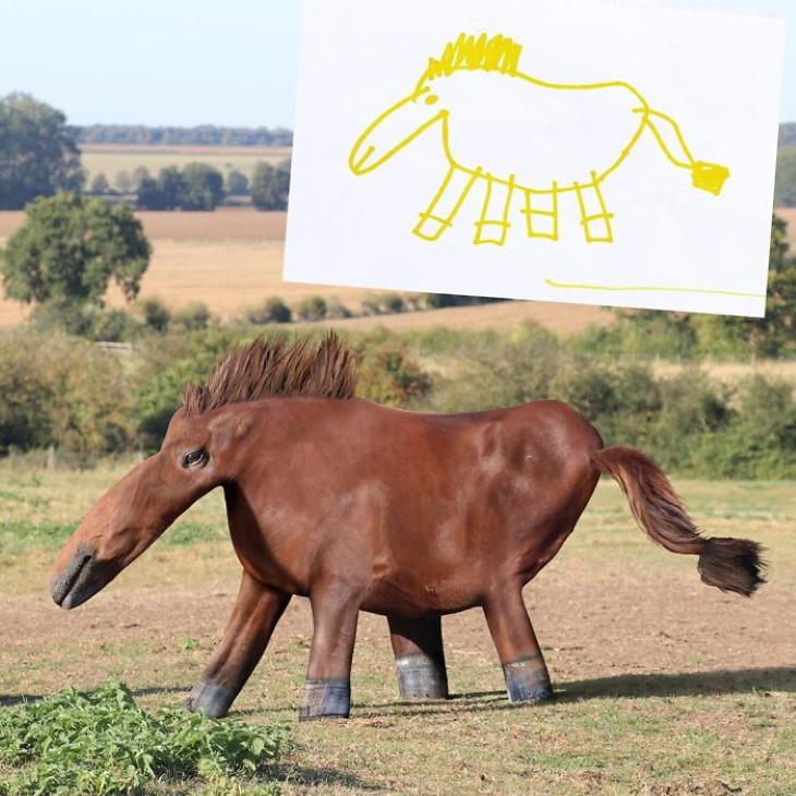 Tom Curtis 'Things I Have Drawn' horse
