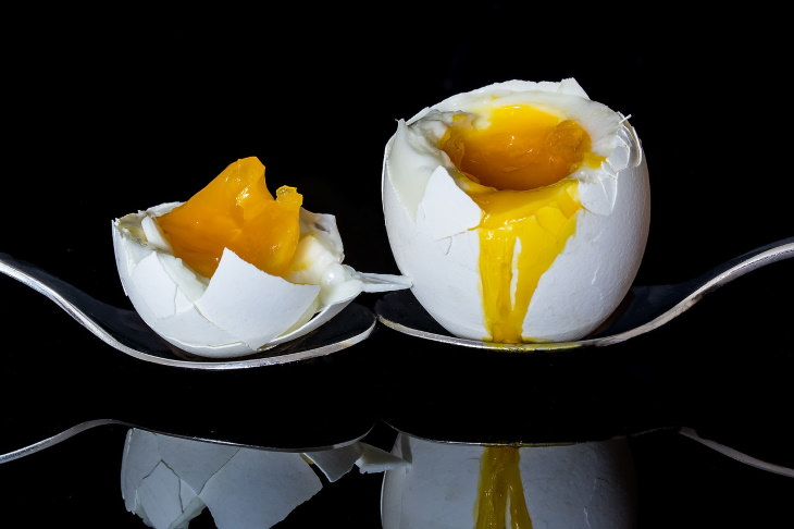 weight loss benefits eggs egg yolk