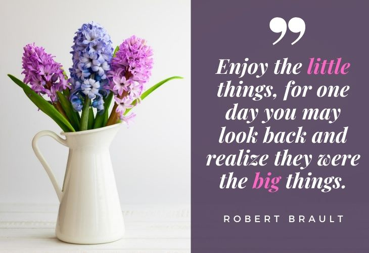 "Gratitude Quotes ""Enjoy the little things, for one day you may look back and realize they were the big things.""  -Robert Brault"