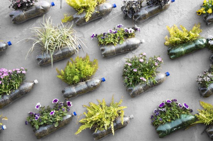 Garden Repurposing Ideas Plastic Bottles in the garden