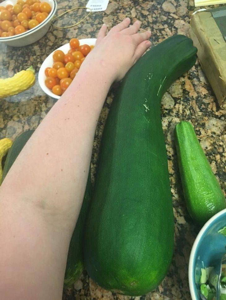 Gian Fruits and Veggies, zucchini