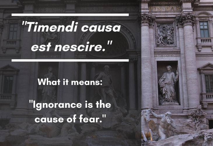 Latin Phrases, ignorance is the cause of fear
