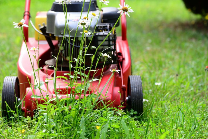 Tips for Preventing Ticks in the Yard Mowing the lawn
