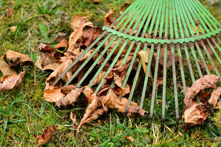 Tips for Preventing Ticks in the Yard Clean the yard of dead leaves