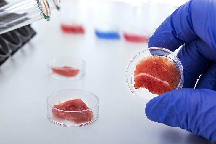 Future Technologies,Lab-created meat