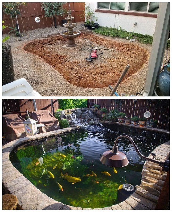 Backyard Renovations koi